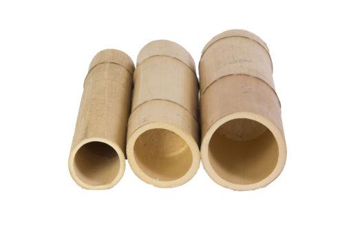 Cañas-Bambú-Moso