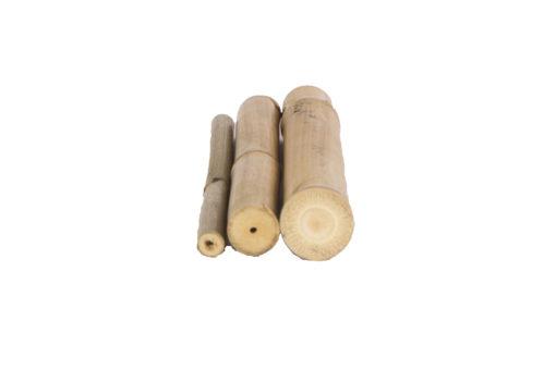 Cañas-Bambú-Tam-Vong