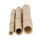 Bamboo pole tonkin - 2-3-cm - 1-90m
