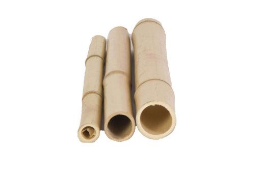 Cañas-Bambú-Tonkin2